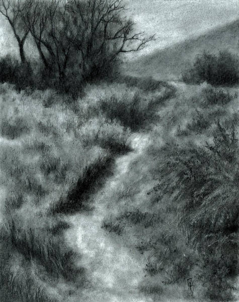 Hiking Drawing - Late Afternoon Walk by David King