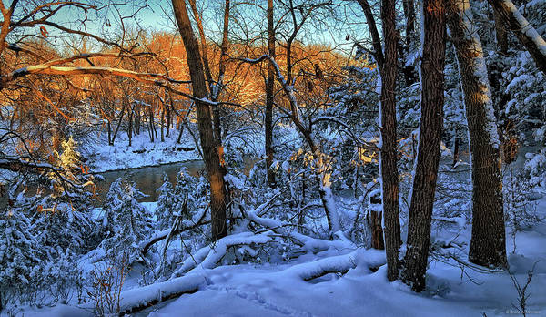 Photograph - Late Afternoon Winter Light by Bruce Morrison