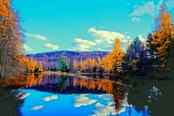 Photograph - Late Autumn At Woodcraft Camp by David Patterson