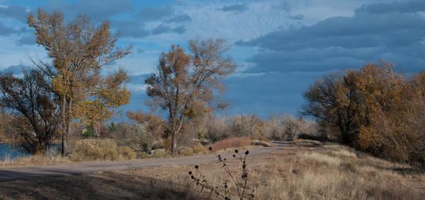 Photograph - Late Autumn Woodland Landscape by Cascade Colors