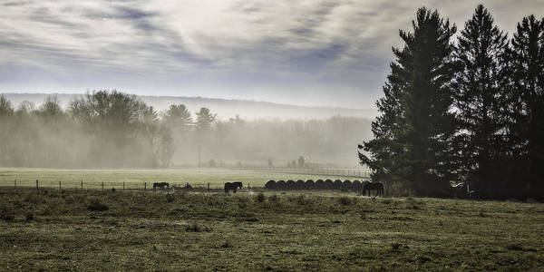 Wall Art - Photograph - Late Fall Morning In The Countryside by Eduard Moldoveanu
