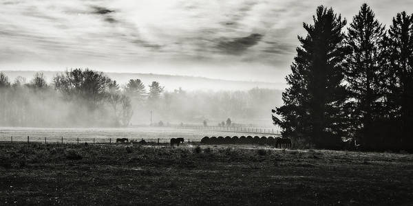 Wall Art - Photograph - Late Fall Morning In The Countryside Black And White by Eduard Moldoveanu