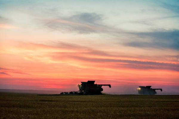 Photograph - Late Harvest by Todd Klassy