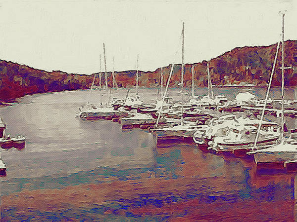Photograph - Late Summer Harbor by Susan Maxwell Schmidt