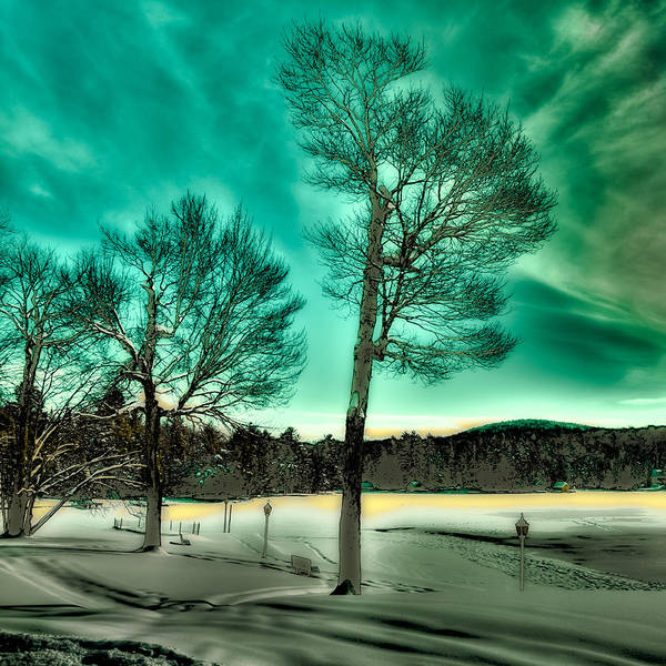 Photograph - Late Sun On Old Forge Pond by David Patterson
