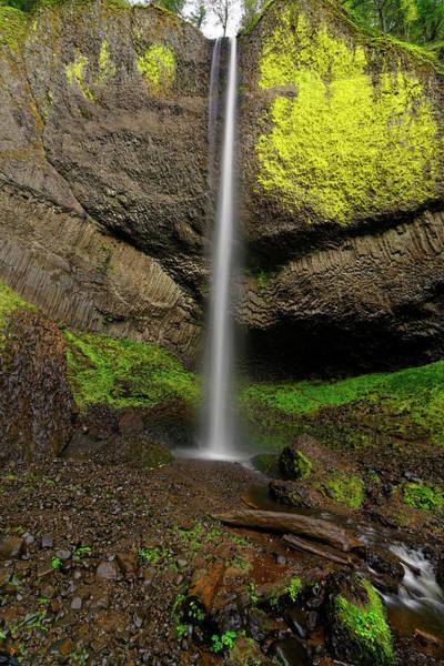 Photograph - Latourell Falls by Jonathan Davison