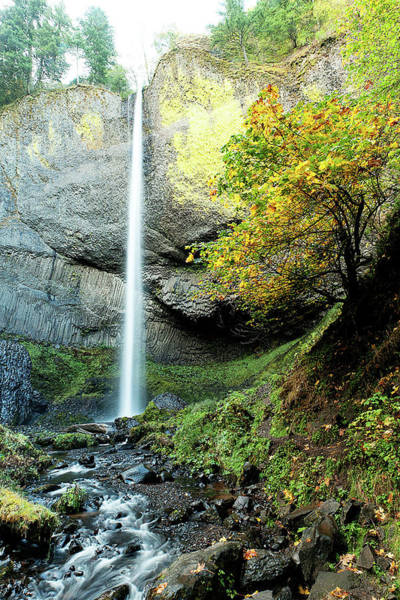 Photograph - Latourell Falls by Norman Hall