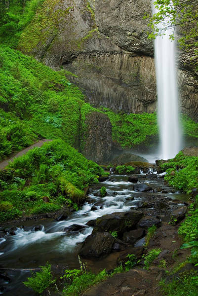 Photograph - Latourell Falls Oregon by Renee Hong