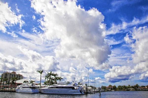 Photograph - Lauderdale Blues by Alice Gipson