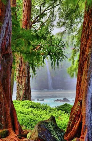 Hawaiiana Photograph - Laupahoehoe Hawaii by DJ Florek
