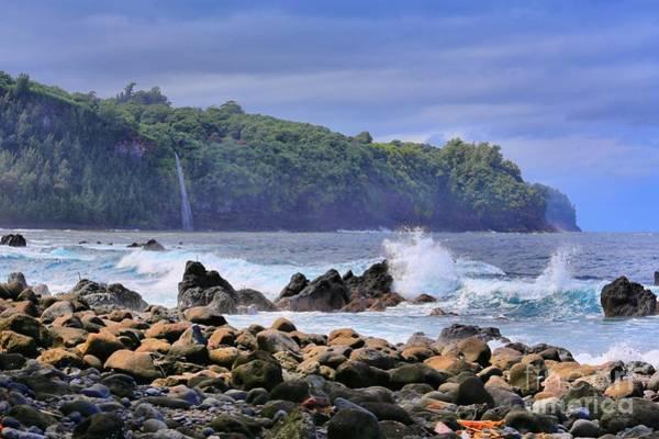 Hawaiiana Photograph - Laupahoehoe Point by DJ Florek
