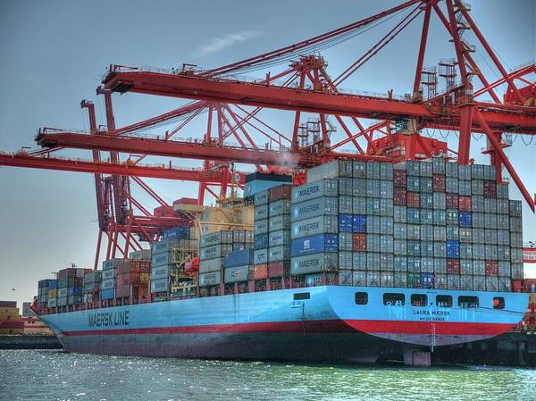 Port Of Vancouver Wall Art - Photograph - Laura Maersk Loading Up by Doug Matthews