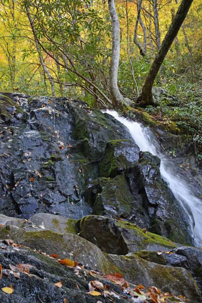 Laurel Falls Great Smoky Mountains National Park Art Print