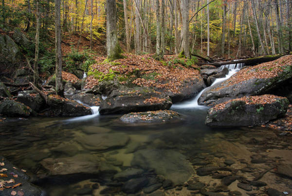 Photograph - Laurel Fork Pool by Andy Crawford