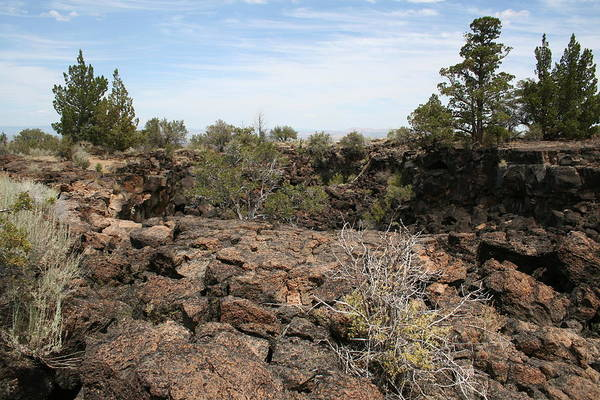 Photograph - Lava Beds Meander by Dylan Punke