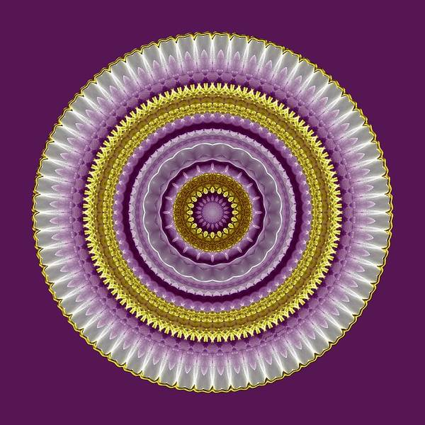 Digital Art - Lavender And Gold Lace by Lynde Young