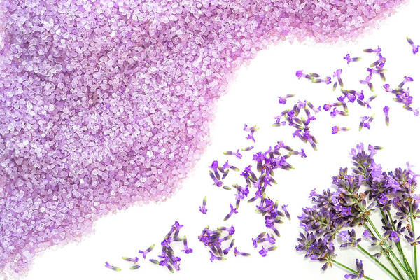 Wall Art - Photograph - Lavender Art by Olivier Le Queinec