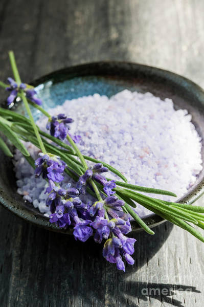 Photograph - Lavender Bath Salts In Dish by Elena Elisseeva