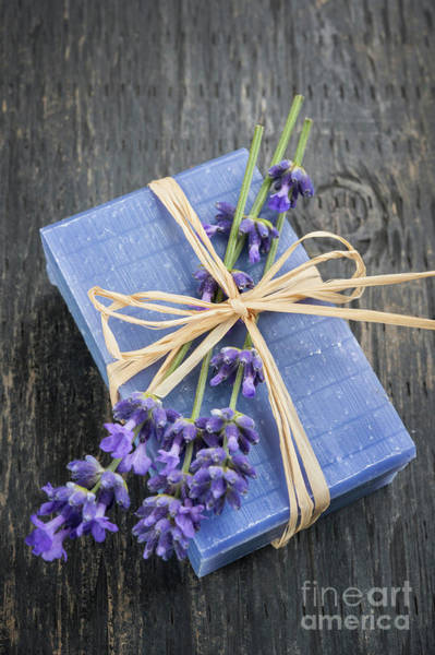 Wall Art - Photograph - Lavender Handmade Soap by Elena Elisseeva