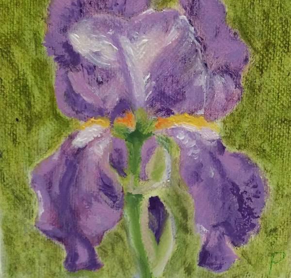 Wall Art - Painting - Lavender Iris by Paula Emery