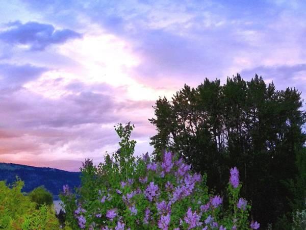 Okanagan Valley Digital Art - Lavender Sky Watercolor by Will Borden