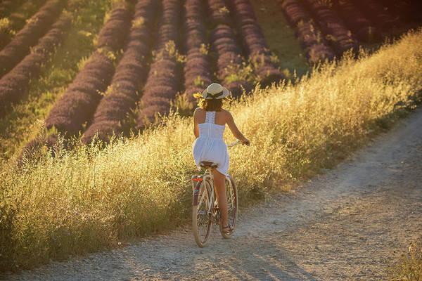 Wall Art - Photograph - Lavender Sunset by Christian Heeb