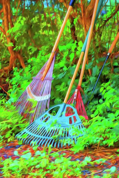 Photograph - Lawn Tools by Tom Singleton