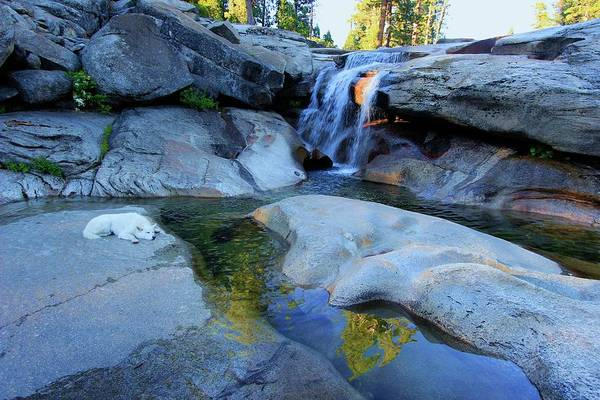 Photograph -  Lay Down With Waterfalls by Sean Sarsfield