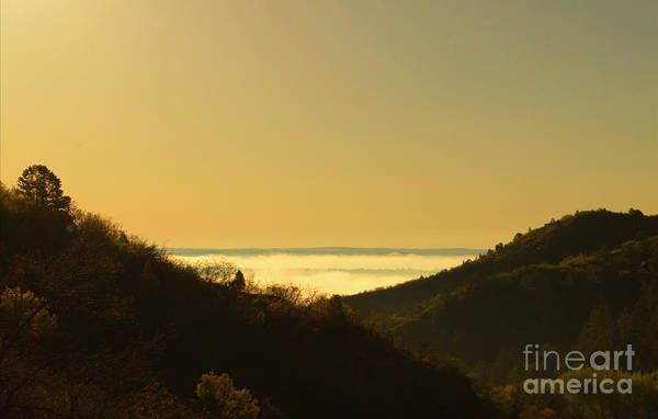 Photograph - Layer Of Fog Over Colorado Springs by Steve Krull