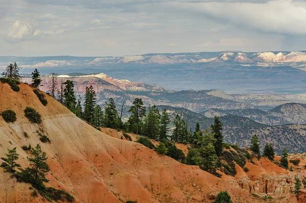 Photograph - Layers And Light At Bryce Canyon by Gaelyn Olmsted