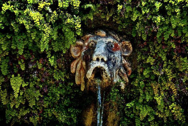 Photograph - Le Cento Fontaine Horizontal by Harry Spitz
