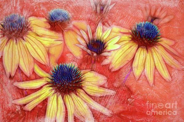 Wall Art - Photograph - Le Clan Des Cinq - 3d04 by Variance Collections