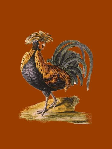 Wall Art - Digital Art - Le Coq Rooster T Shirt Design by Bellesouth Studio