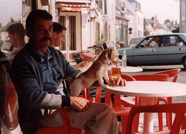 Outdoor Cafe Photograph - Le Petit Chien - Little Dog by Harvie Brown
