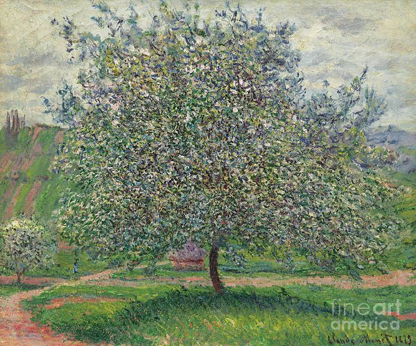 Wall Art - Painting - Le Pommier, 1879 by Claude Monet