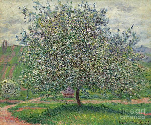 Apple Tree Painting - Le Pommier, 1879 by Claude Monet
