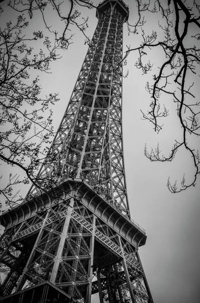 Photograph - Le Tour Eiffel by Miguel Winterpacht