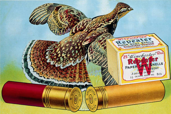 Painting - Leader Repeater Quail Loads by Unknown