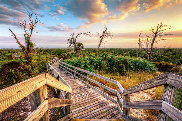 Photograph - Leading Into Sunset by Debra and Dave Vanderlaan
