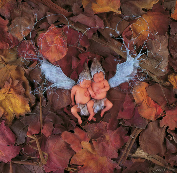 Wall Art - Photograph - Leaf Fairies by Anne Geddes