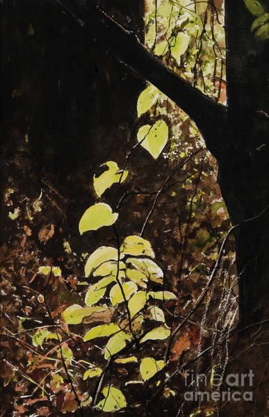 Leaf Glow Art Print by Carla Dabney