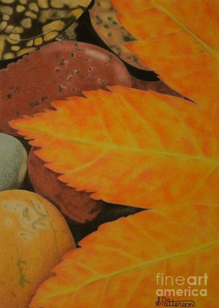 Dark Pink Drawing - Leaf Over Rocks by Sharon Patterson