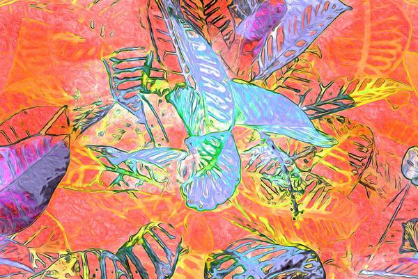 Photograph - Leaf Pattern 35 by Lynda Lehmann