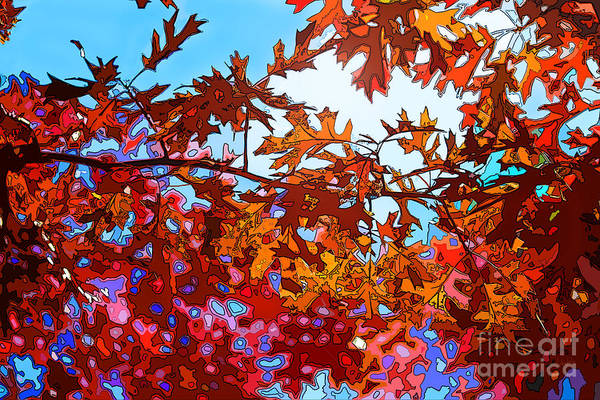 Wall Art - Photograph - Leaf Space by Anthony Forster