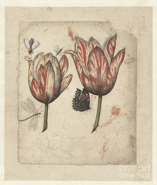 Painting - Leaf With Two Tulips And Some Insects by Celestial Images