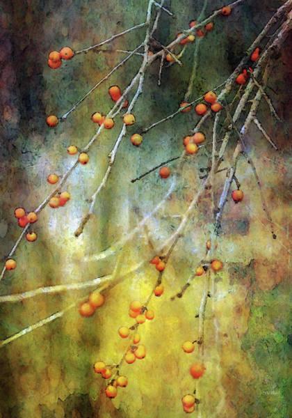 Photograph - Lean Berries 7970 Idp_2 by Steven Ward