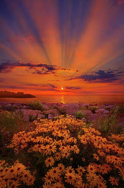 Wall Art - Photograph - Lean Not On Your Own Understanding by Phil Koch