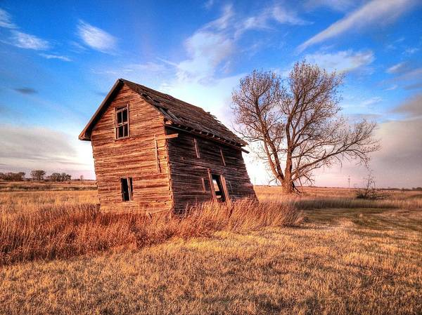 Photograph - Lean On The Old House by David Matthews