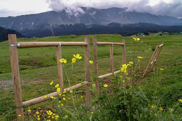 Photograph - Leaning Fence by Hitendra SINKAR