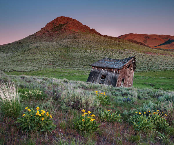 Photograph - Leaning Shed 2 by Leland D Howard